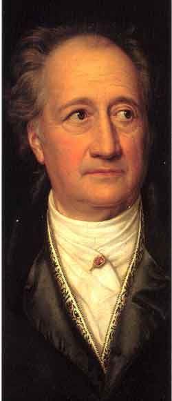 Goethe And Ginkgo